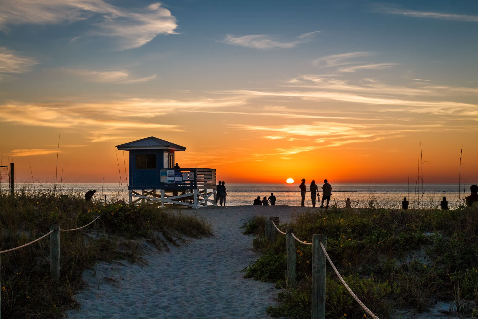 The 10 Best Hotels in Venice Beach Florida