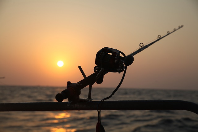 3 Places You Should Visit When Going Fishing in Canada